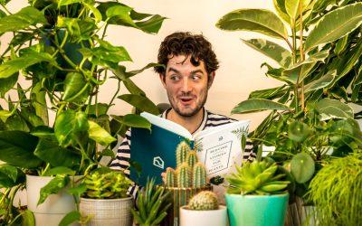 5 manières de parler a vos vos plantes vertes pour qu'elles poussent