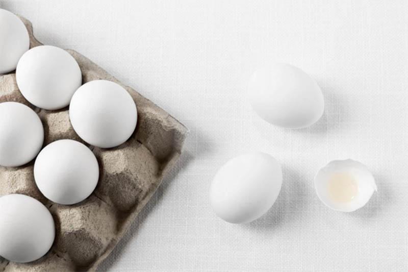 engrais naturel coquilles d'œuf