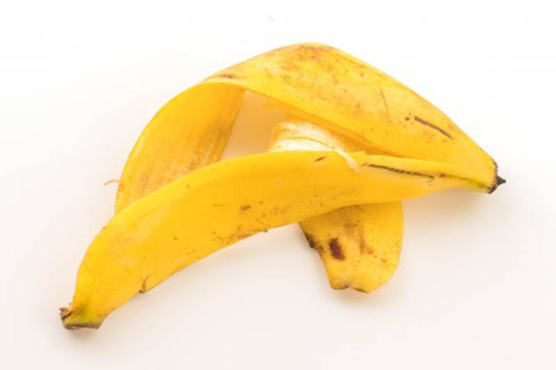 engrais naturel peau de banane