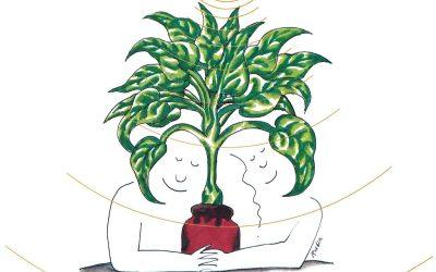 Guide du Symbolisme des plantes Vertes